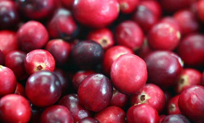 Photo Of Fresh Cranberries